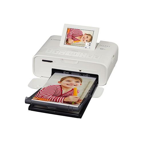 SELPHY CP1300 限量版Dustykid 禮盒套裝